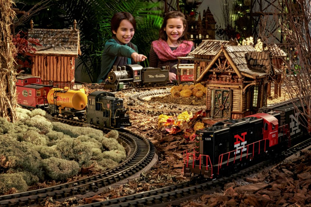 Out & About: Holiday Train Shows Rolls into the Bronx ...