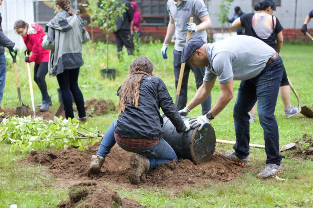 Greener Days in Hopes of Healthy Lifestyles at DeWitt Clinton HS